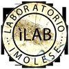 Laboratorio Imolese Logo